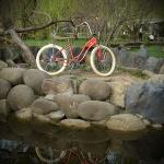 biciclete_pegas_15