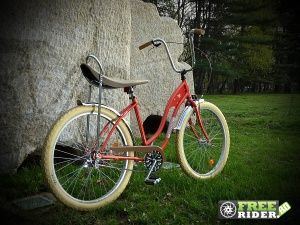 biciclete_pegas_18