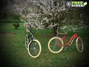biciclete_pegas_19