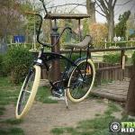biciclete_pegas_3
