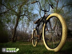 biciclete_pegas_8