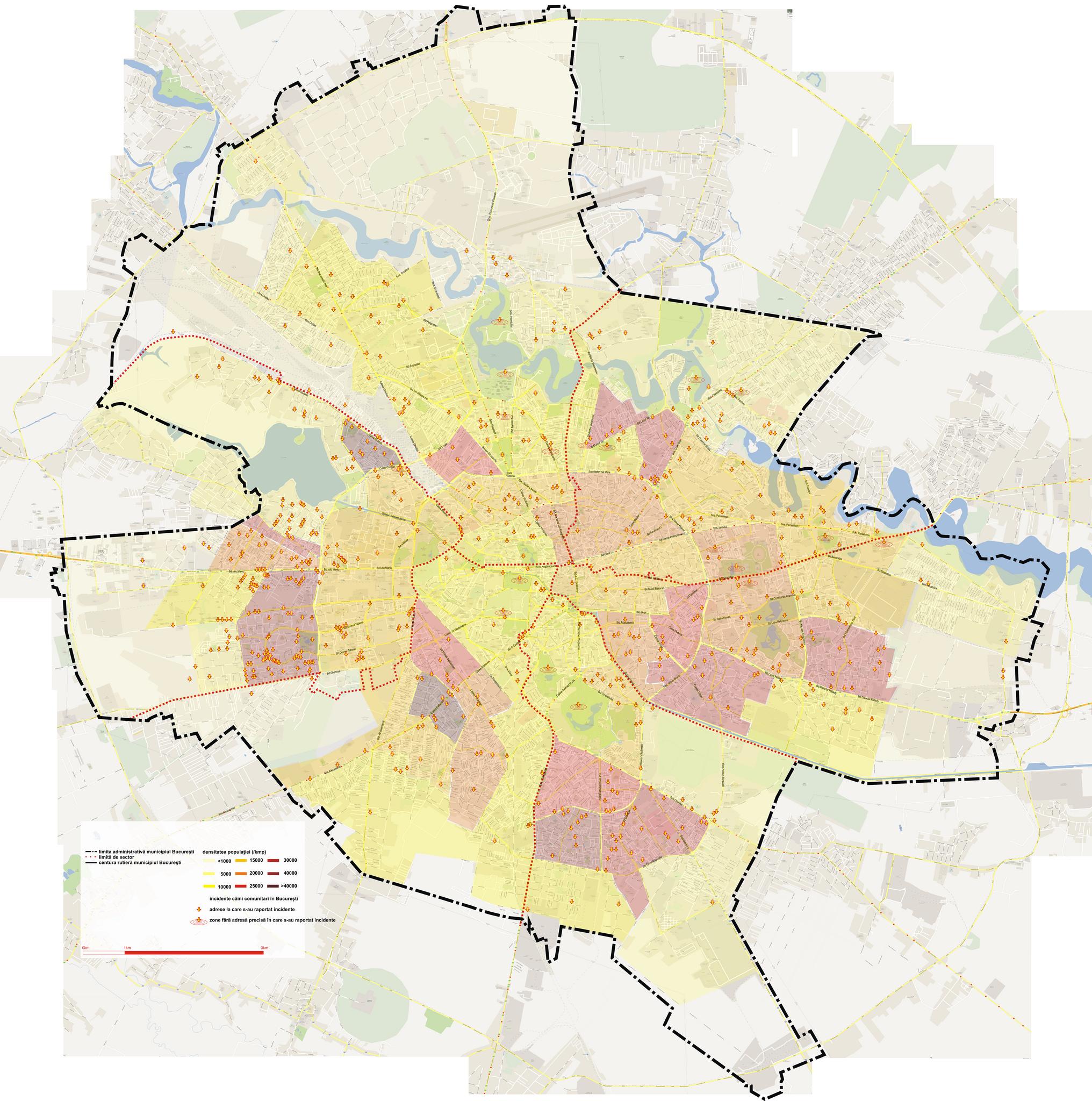 Harta Maidanezilor Din București și Zonele Cele Mai Periculoase