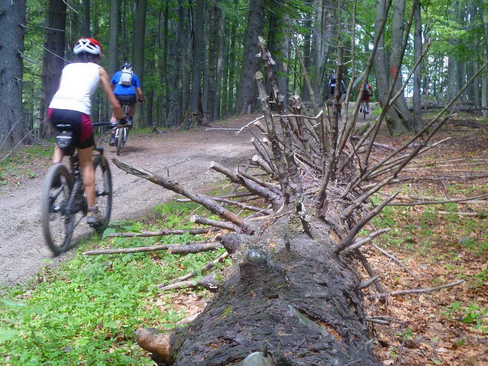 traseu bicicleta grohotis ciucas 13