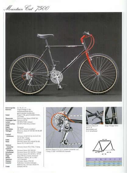 mountaincat1989
