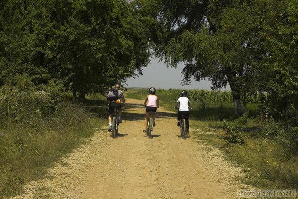 traseu bicicleta Bucla Caldarusani 2