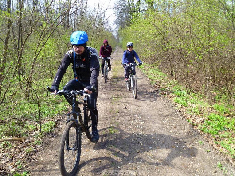 traseu ciclism Padurea Cernica 1
