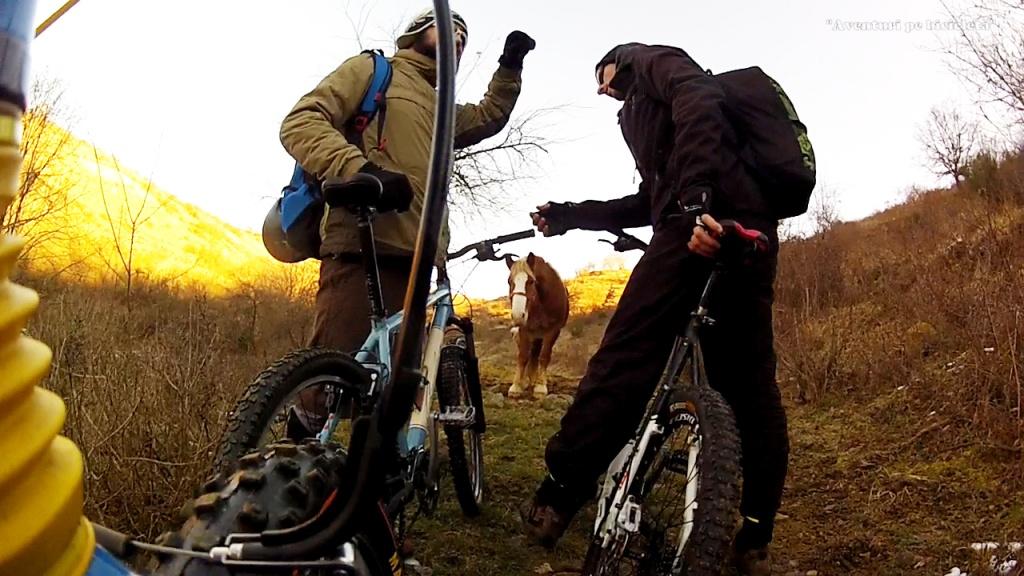 Aventuri-pe-bicicleta-Excursie-cu-bicicleta-pe-zapada-si-noroi-in-Muntii-Zarandului-Arad-2015