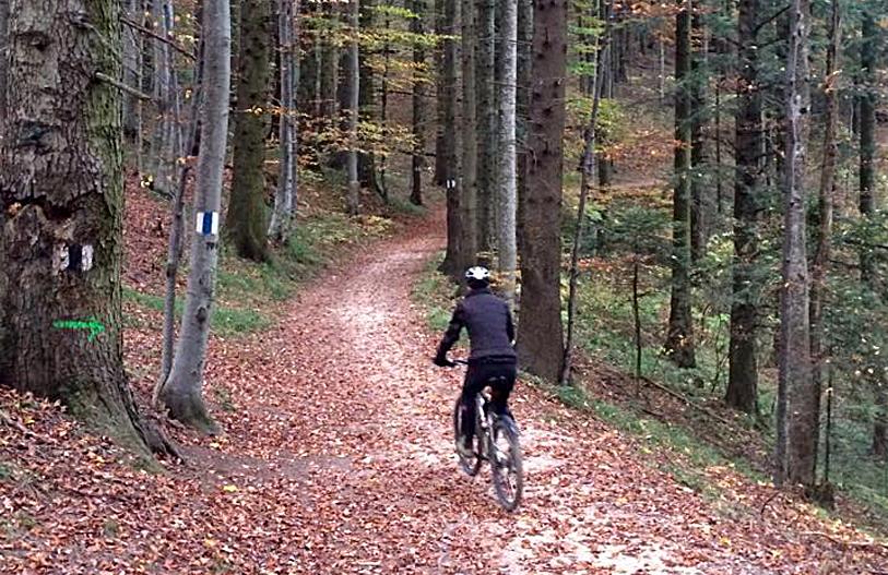 3-trasee-de-bicicleta-in-Brasov-2