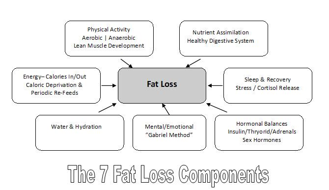 pierderea în greutate care rămâne oprită