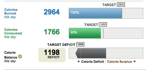 Estimarea datei obiectivului de pierdere în greutate