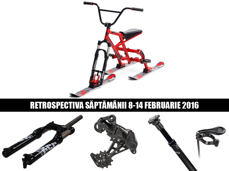 retrospectiva saptamanii 8-14 februarie 2016