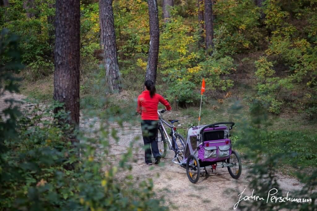 Remorci de bicicleta pentru copii 04
