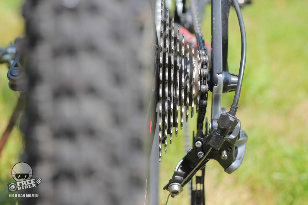 review recenzie test Silverback Spectra Comp 14