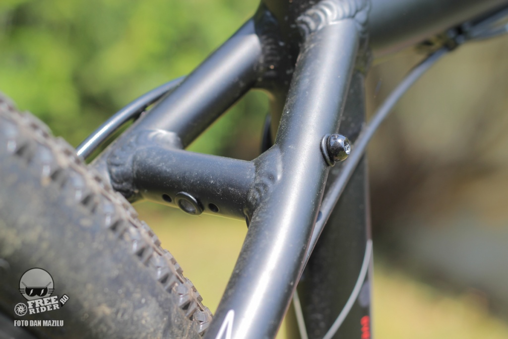 review recenzie test Silverback Spectra Comp 15