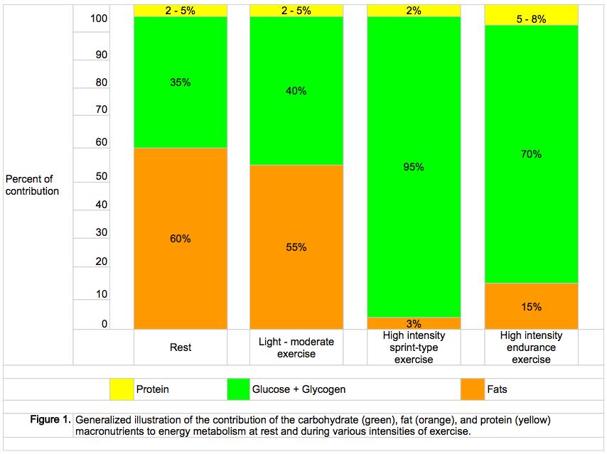 Procentul în care organismul utilizează macronutrienții în funcție de intensitatea efortului