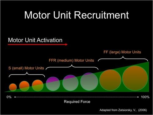 MU Recruitment
